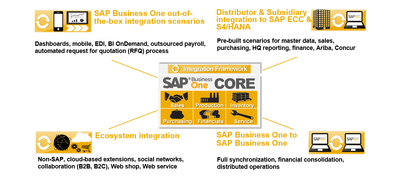SAP Business One for Large Enterprises